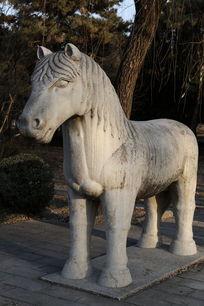 十三陵神道石像生站姿马石雕像