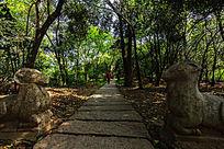 采石矶公园的石板登山道