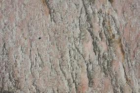 粉色石材花纹