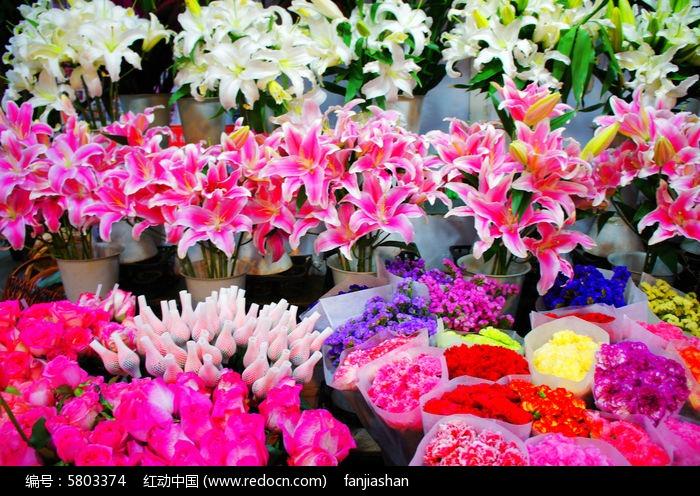 原创摄影图 动物植物 花卉花草 花店鲜花