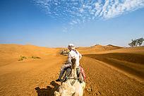 沙漠骆驼队