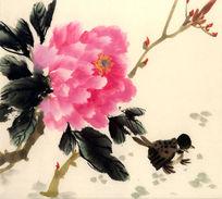牡丹花国画