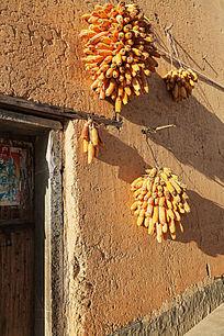 红土墙上晒着几串玉米棒