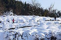 红衣女孩坚毅地步行雪地里