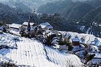 金龙山梯田茶园被厚厚的积雪覆盖