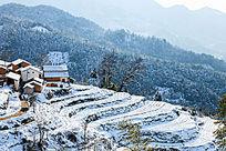 金龙山雪景风光一隅