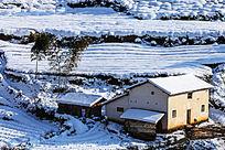 民居屋后的毛竹与厚厚的积雪
