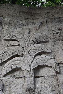 香蕉树浮雕