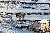 雪后阳光照射在雪地上