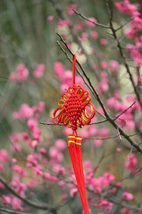 花枝上的中国结