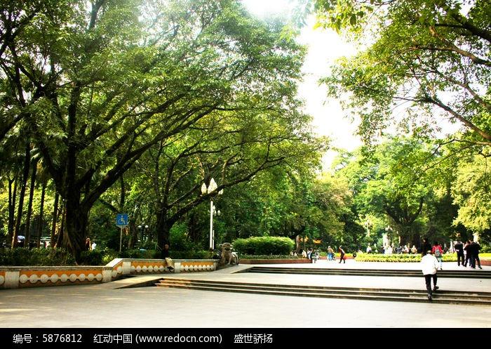 公园园林树风景图片,高清大图