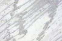白色大理石板
