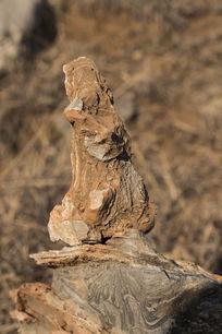 黄鼠狼状奇石