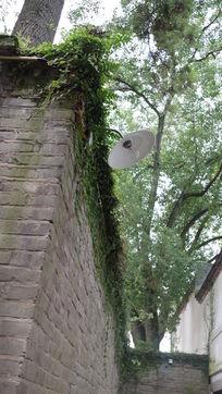 砖墙上的老路灯