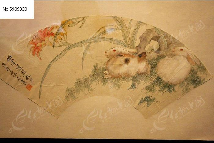 兔子花卉工笔画图片