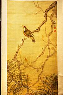 枝头上鸟工笔画