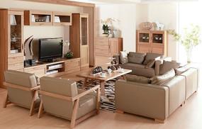 现代式室内客厅家居图片