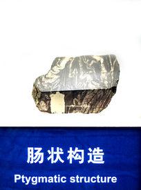 肠状构造岩石