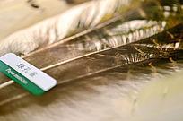 绿孔雀羽毛