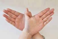 """手指影像""""老鹰"""""""