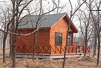 槐林小木屋