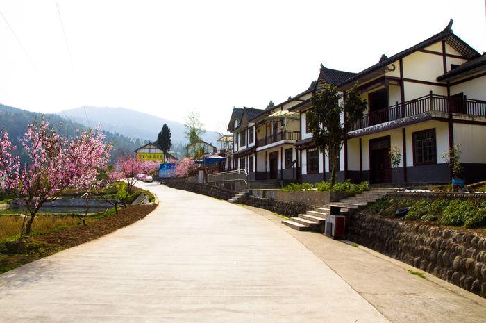 乡村房屋图片