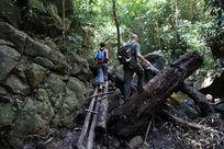 户外运动雨林穿越