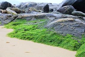 独特的海滩岩石