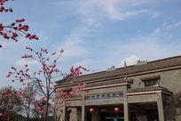 赏樱花游客服务中心