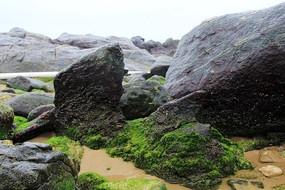 艺术的海滩岩石