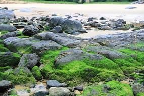 整片的岩石海滩