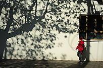 冬日街上一景