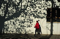 行走在冬日