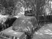黑白破旧汽车