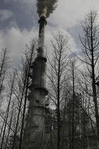 树林中的工业烟囱