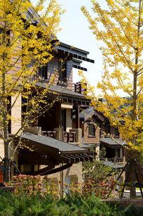 度假别墅景观及雨棚设计