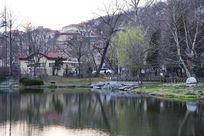 春天的湖面