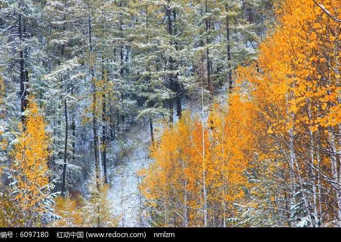 林海秋雪风光图片