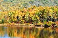山林河流秋色
