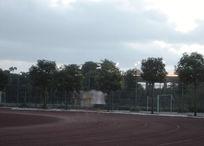 早上跑步摄影