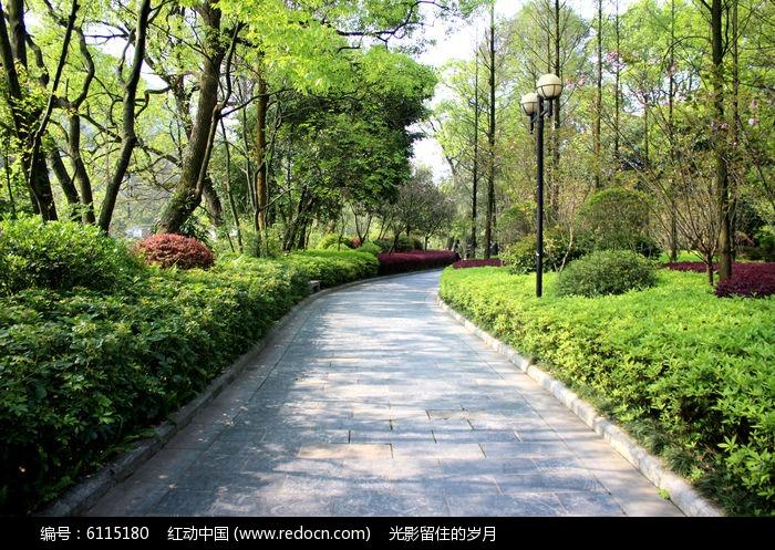 植物园道路