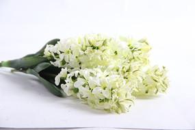 白色绿植手捧花
