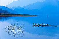 蓝调的奇墅湖风光