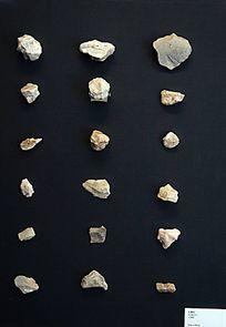 周口店遗址博物馆展出的石制品