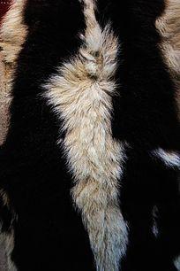 黑白色动物皮毛