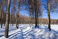草原树林雪景