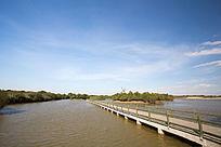 湿地栈道湖泊