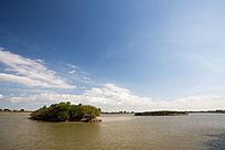 原生态湿地湖泊柽柳林