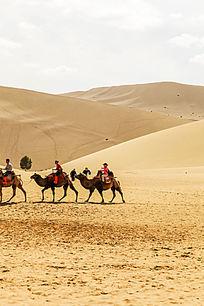 沙漠中的驼队