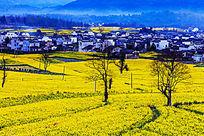 世界文化遗产地卢村